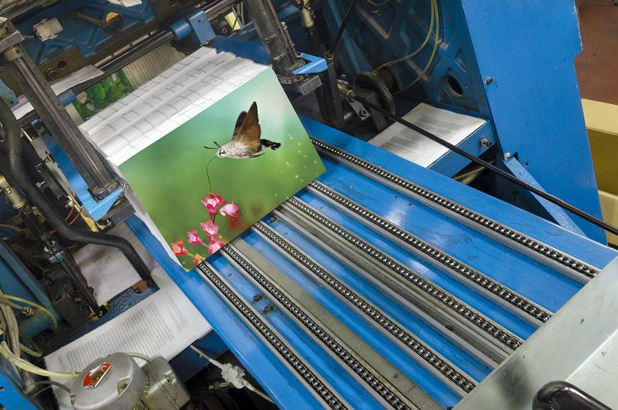 הדפסת ספרים- דפוס מנטורס